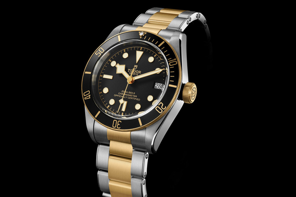 Montre-Tudor-Heritage-Black-Bay-S&G-2