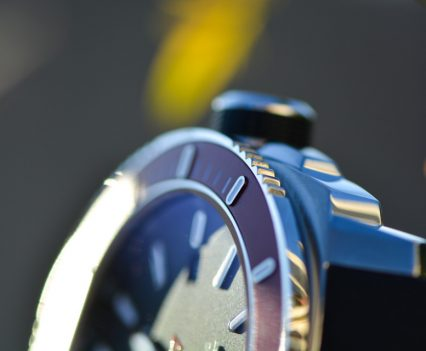 Montre-Alpina-Seastrong-Diver-300-Automatic-13
