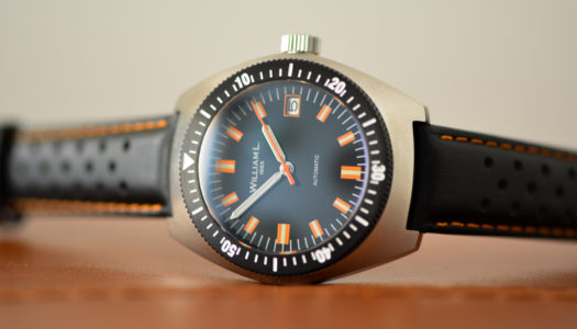 William L. 1985 Vintage Diver : automatique, stylée et abordable